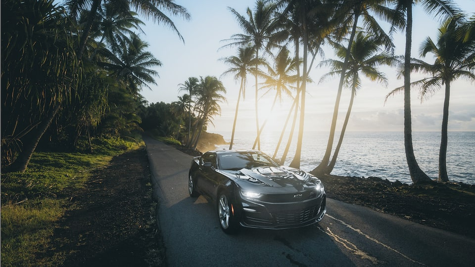 Front view of a 2020 Camaro SS parked on a single-lane road with palm trees and the ocean in the background.