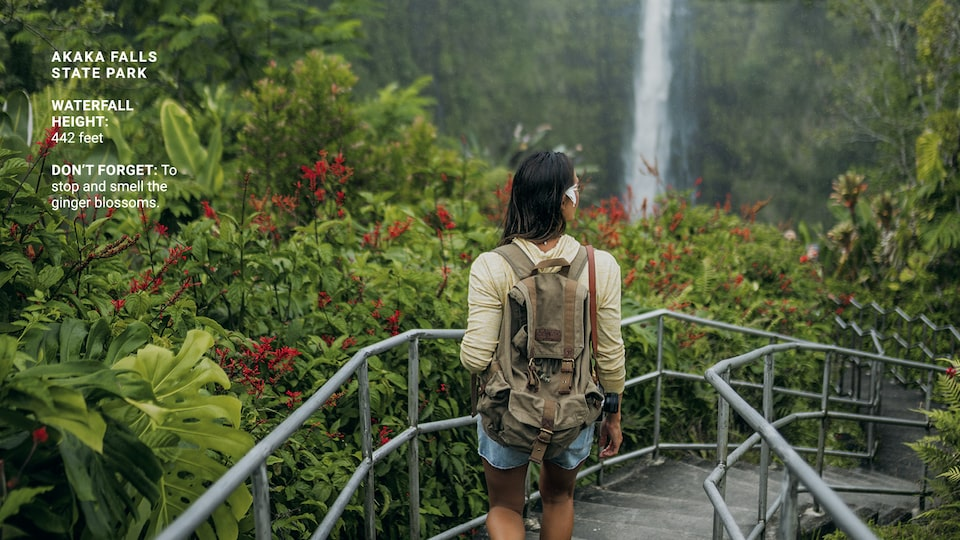 A woman walking down concrete steps with metal rails on both sides, surrounded by lush greenery and with a narrow, high waterfall in the distance.