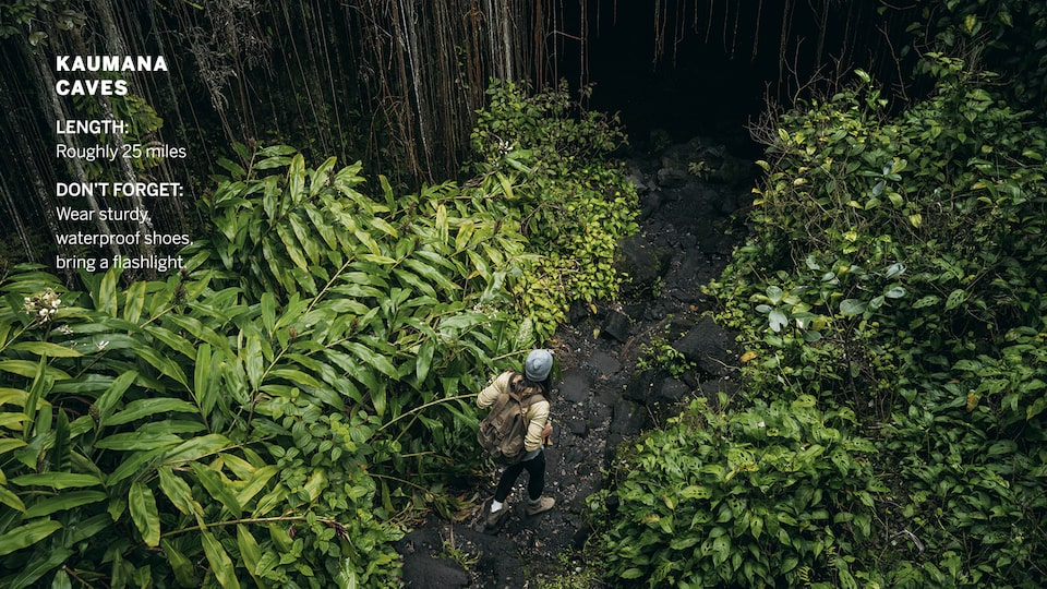 A woman wearing a backpack is seen from above in a drone shot hiking on a narrow path through lush greenery in a forest.