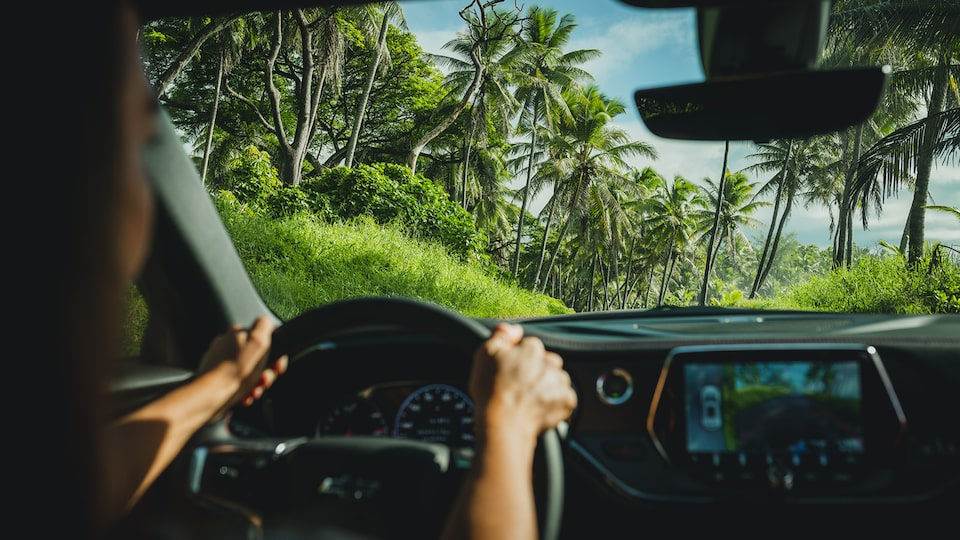 A shot of blue sky, palm trees, and a very green landscape seen through the windshield of a Chevrolet Blazer.