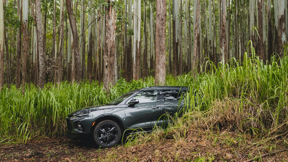 A gray Chevrolet Blazer emerges from between high green plants on a two-track dirt road.