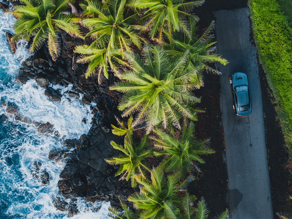 An aerial view of a 2020 Camaro SS stopped on a single-lane road with palm trees, a rocky  shore, and the ocean on the driver's side.
