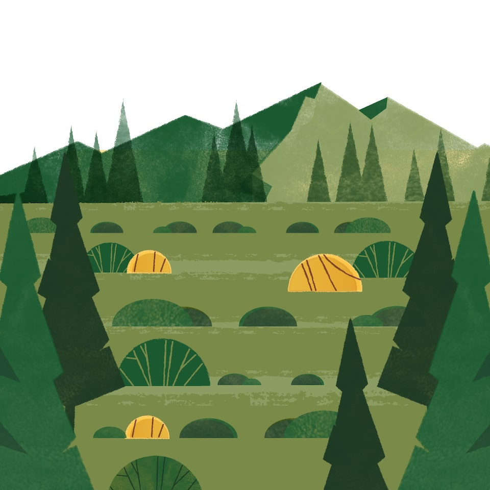 An illustration of mountains, trees, and green fields.