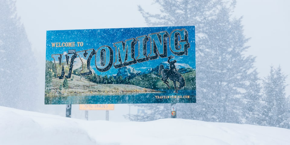 A bright blue billboard advertising the state of Wyoming sits on a snow-covered hill with large trees in the background.