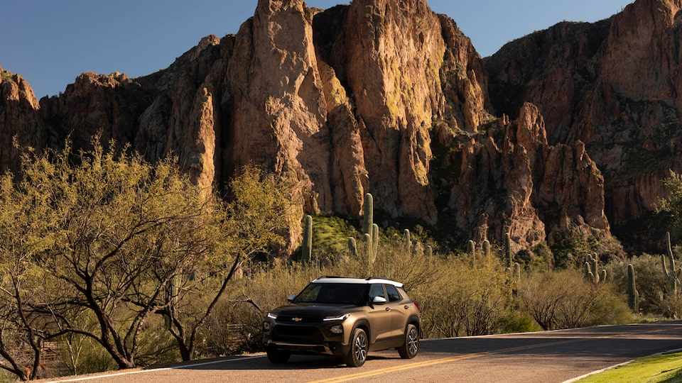 A Zeus Bronze Metallic/Summit White Chevy Trailblazer sits on a dirt road in the desert surrounded by cactus and brush in front of a rocky cliff.