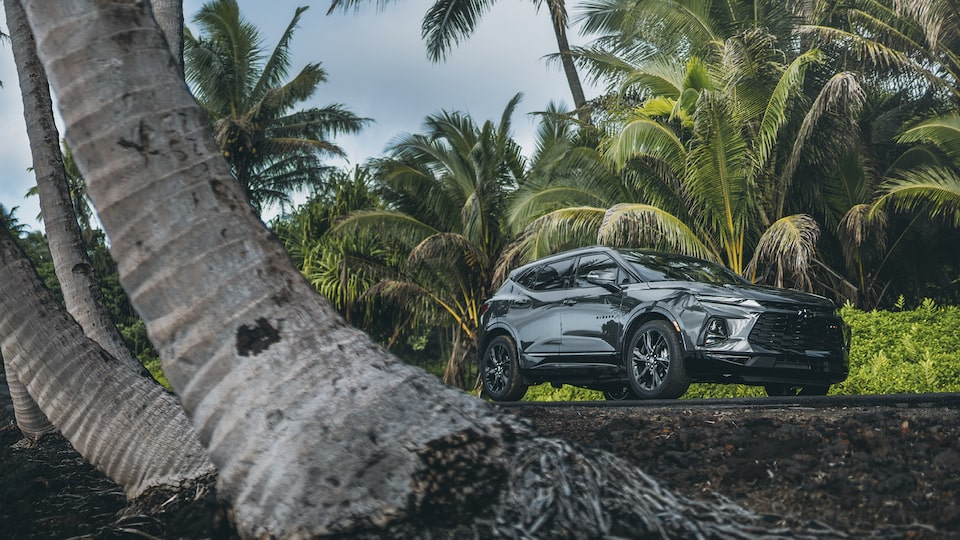A Nightfall Gray Metallic Chevrolet Blazer is stopped on a roadway lined with palm trees.