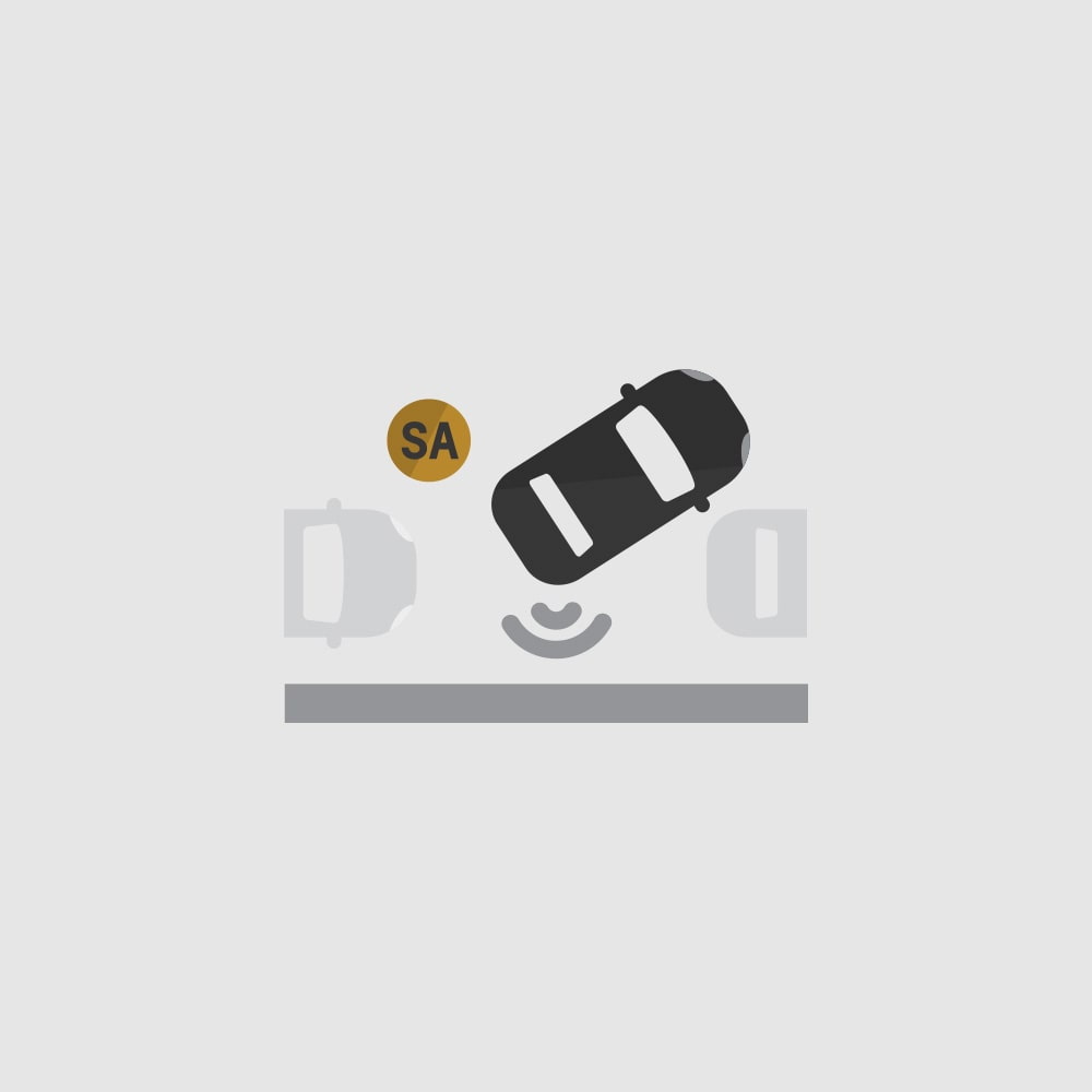 Semi Automatic Parking Assist Icon
