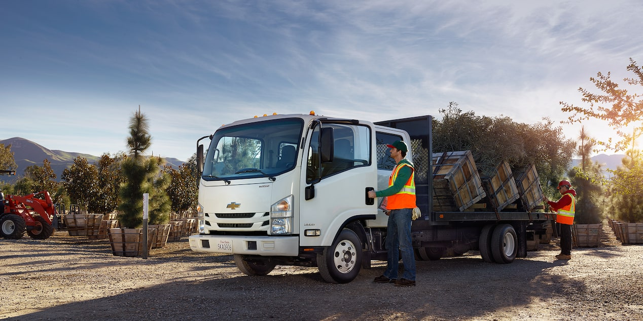 2017 Low Cab Forward Trucks